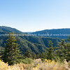 San Bernardino National Forest California USA