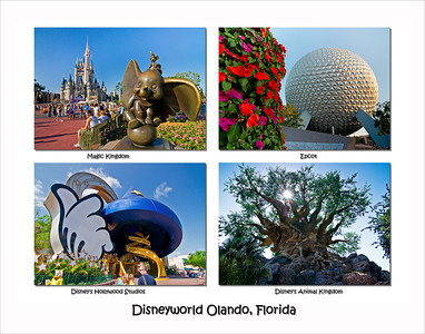 Disney world Landscape