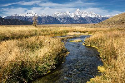 Creek in meadow along Tetons