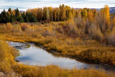 Creek near Tetons