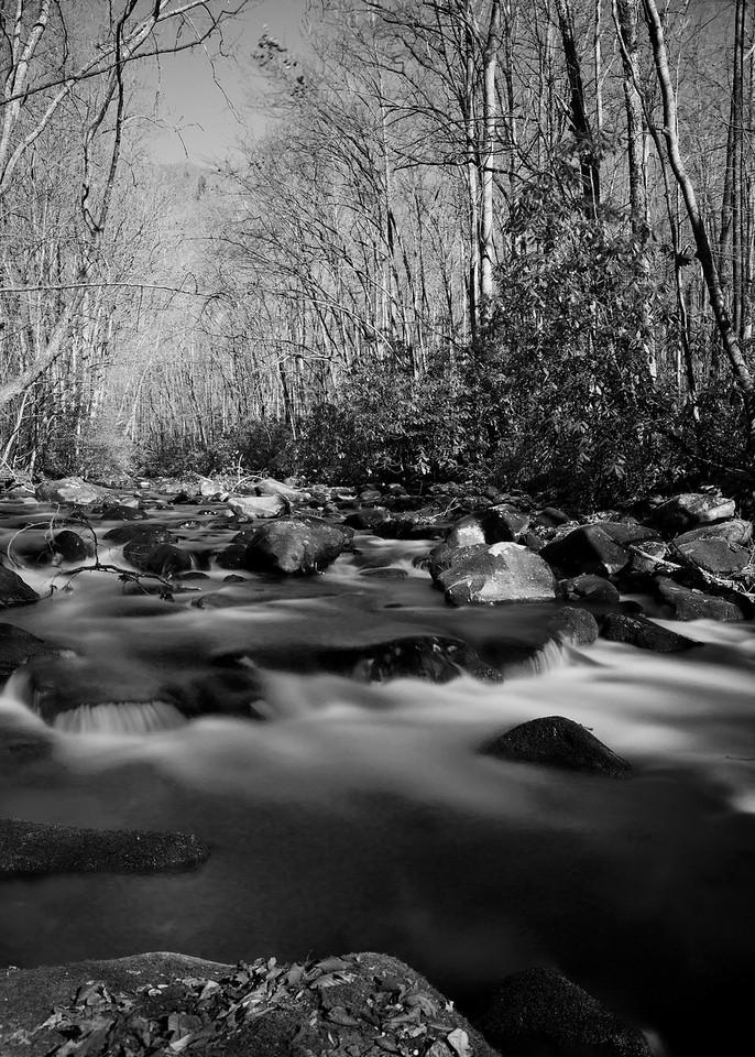 B&W River