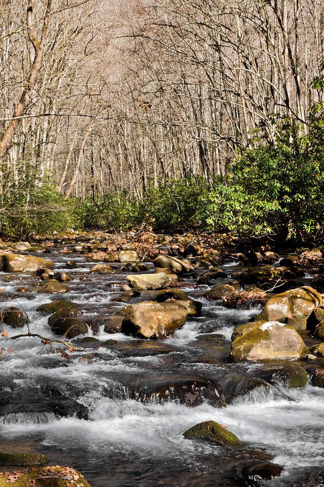 Oconaluftee River 2