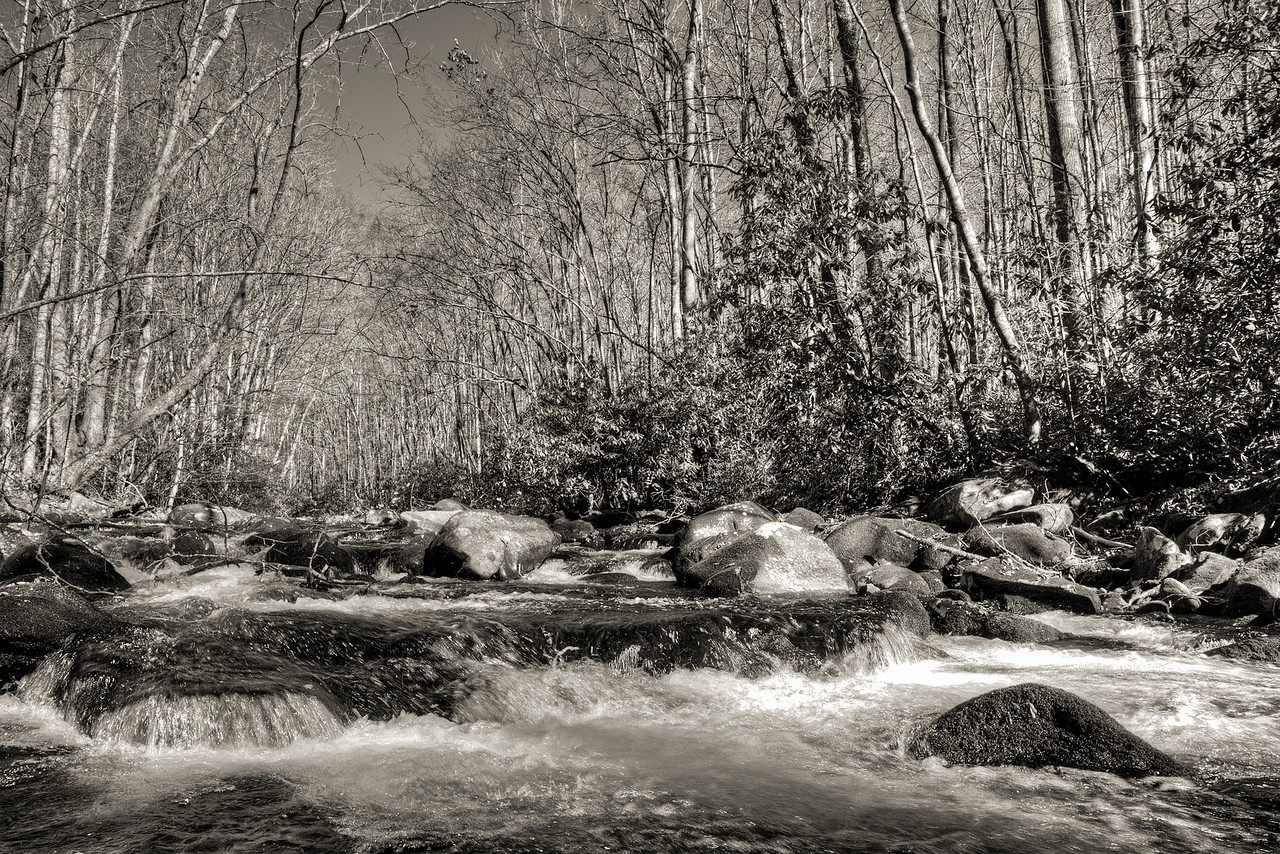 Oconalufee River B&W