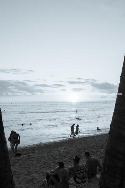 Vintage Waikiki image