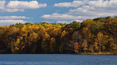 Autumn colours, Seneca Creek State Park