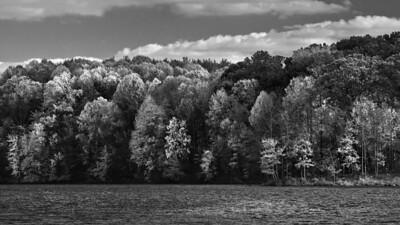 Autumn B&W, Seneca Creek State Park