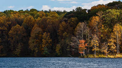 Colours, Seneca Creek State Park