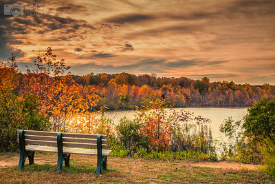 Autumn Colors (Plainsboro)