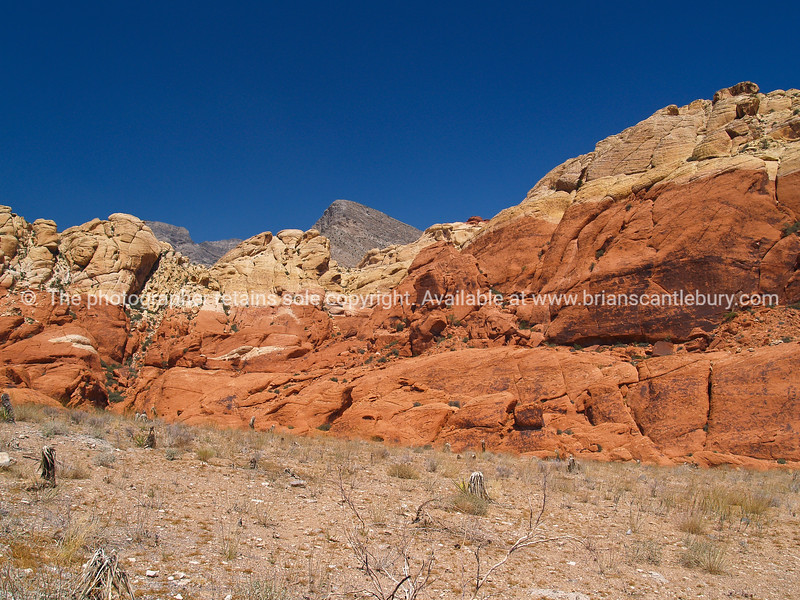 Red Rock Canyon Landscape.