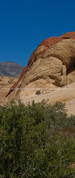 Expansive landscapes and colorful escarpments of Red Rock Canyon