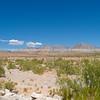 Desert landscape, Red Rock Canyon.