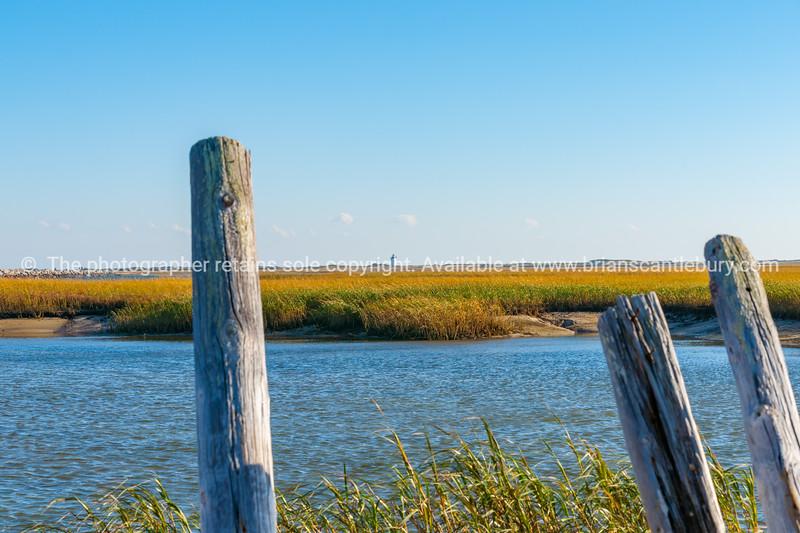 Salt Marsh and Long Point Lighthouse.