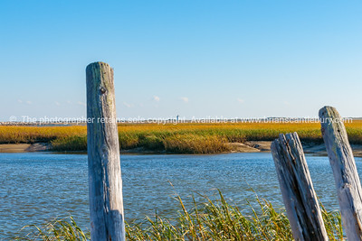 Salt Marsh and Long Point Lighthouse.