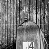 Old red barn and rural letter box  number 4.