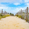Sand fences line path over beach to waterfront