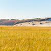 Long Point Marsh, Massachusetts, National Seashore,