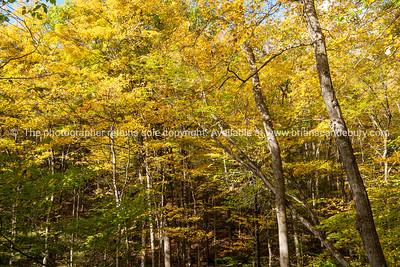 Vermont, USA. (20 of 53)