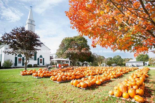 Cape Cod,Mass, USA, 2014 (20 of 36)