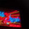 Bright red and blue neon sign of car on highway in Gallup New Mexico