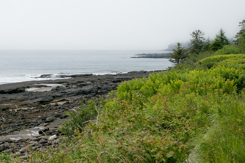 • Location - The south part of Grand Manan Island where it was foggy when we were there<br /> • Scenic view along the south coast
