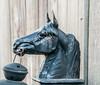 • Location - New Castle, Delaware<br /> • Interesting looking metal statue of this horse