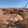 Slickrock Foot Trail, The Needles District, Canyonlands National Park, Utah