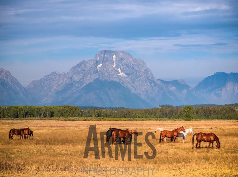 Mount Moran view from US191, Moran, Wyoming