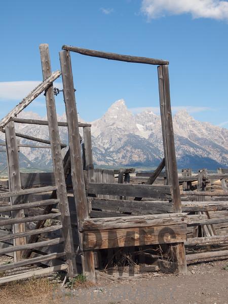 John Moulton Barn on Mormon Row  with Teton Range in the background