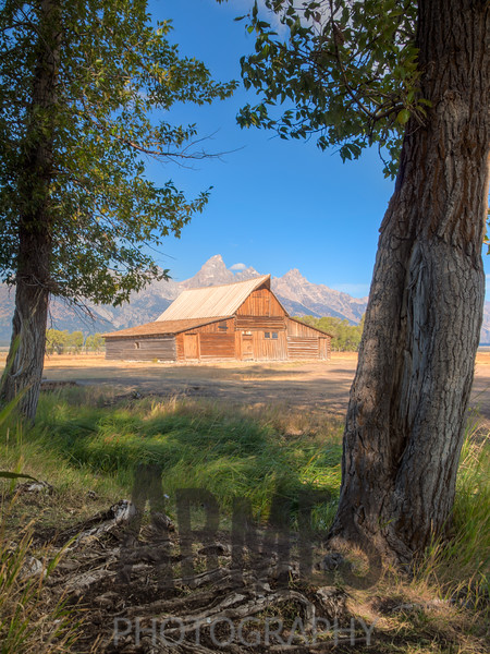 T.A. Moulton barn on Mormon Row  with Teton Range in the background