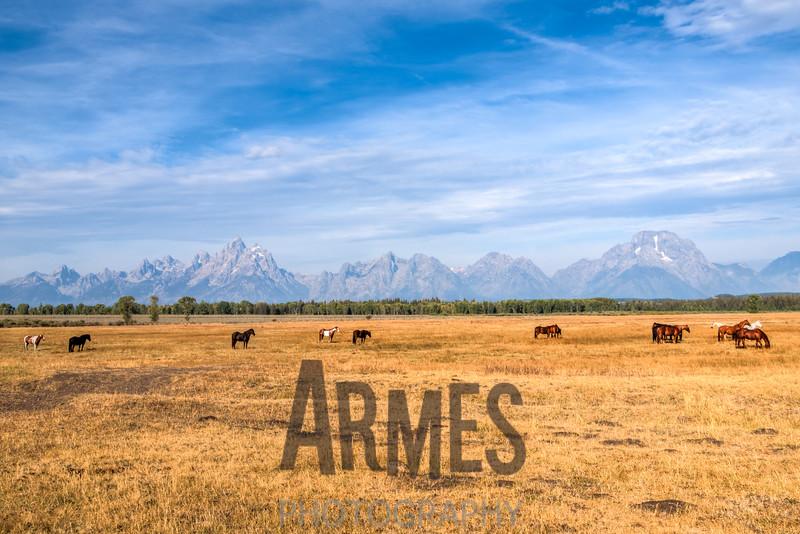 Grand Teton National Park mountain range view from US191, Moran, Wyoming