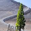 Cinder Cone <br /> Lassen Volcanic Park, California