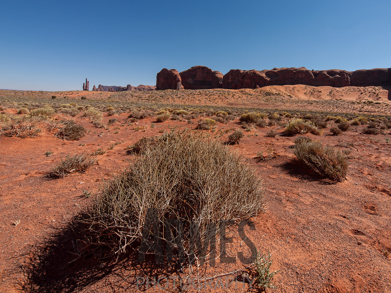 Thunderbird Mesa with Totem Pole in the distance, Monument Valley, Navajo Tribal Park, Arizona