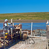 Oyster Farm, Drakes Estero, Point Reyes National Seashore, California