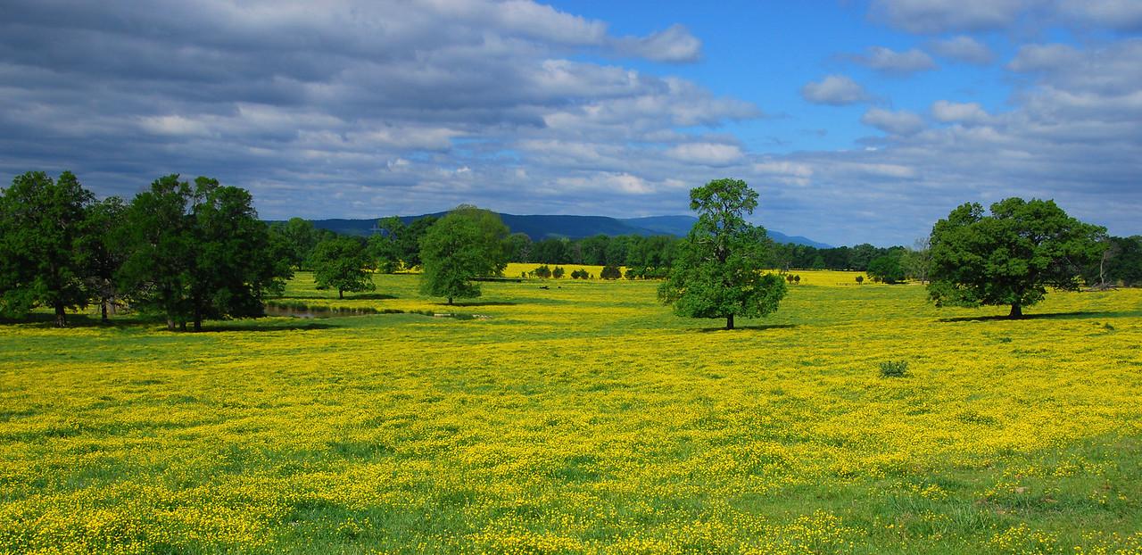 The fields of Arkansa