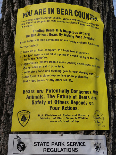 'Feeding bears is a dangerous activity' - NO SHIT!