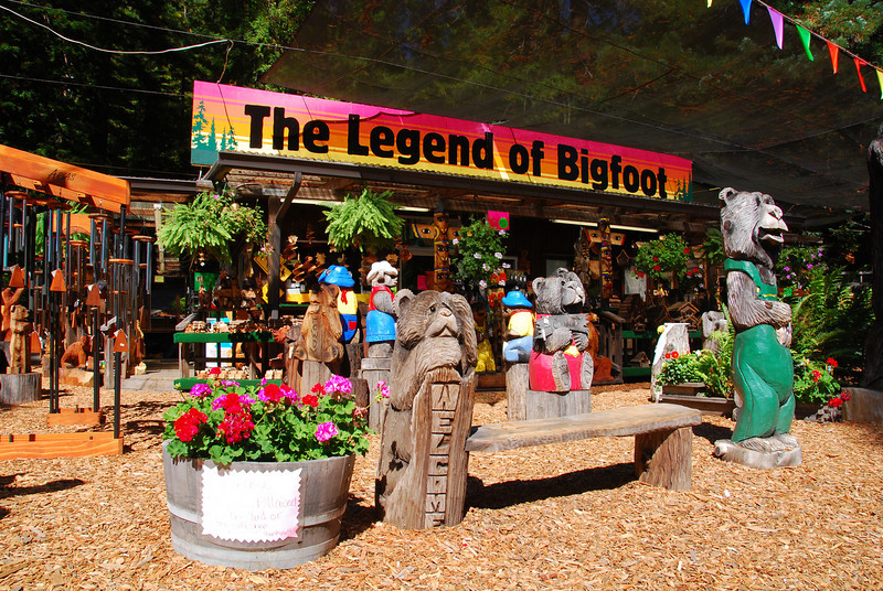 'The Legend of Bigfoot'. Award winning chainsaw carvings, CA