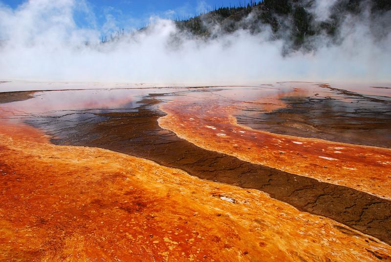Yellowstone NP, WY