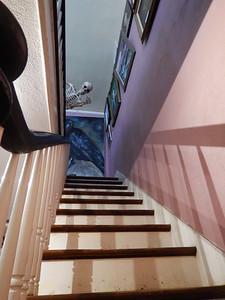 skeleton on stairwell