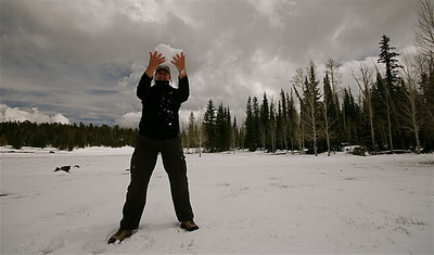 Spelen in de sneeuw. Kaibab Forest, Arizona, USA.