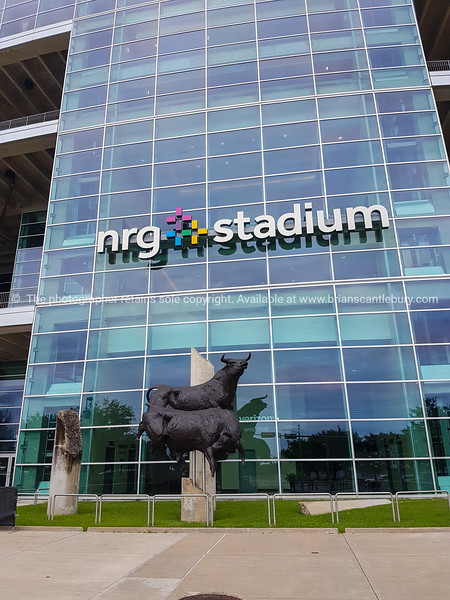 NRG Stadium, Houston.