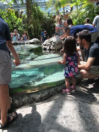 Tenness Aquarium