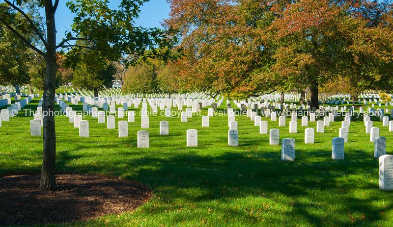 Arlington National Cemetery historic graveyard of national servicemen and heroes in Virginia across bridge from Lincoln Memorial.