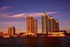 USA- South Miami Beach -IMG_1505