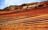 USA- Zion National Park -IMG_7684sm