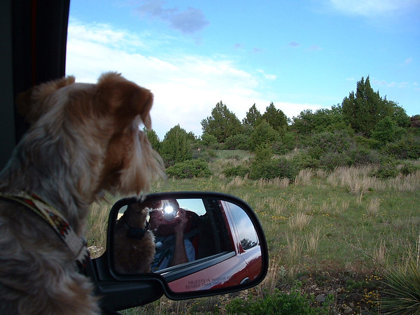2003 Trip West 02 NM
