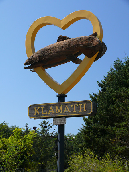 Klamath, CA the drive through tree Salmon fest, Red Woods<br /> near by and the Ocean that Shadow loves to play in.