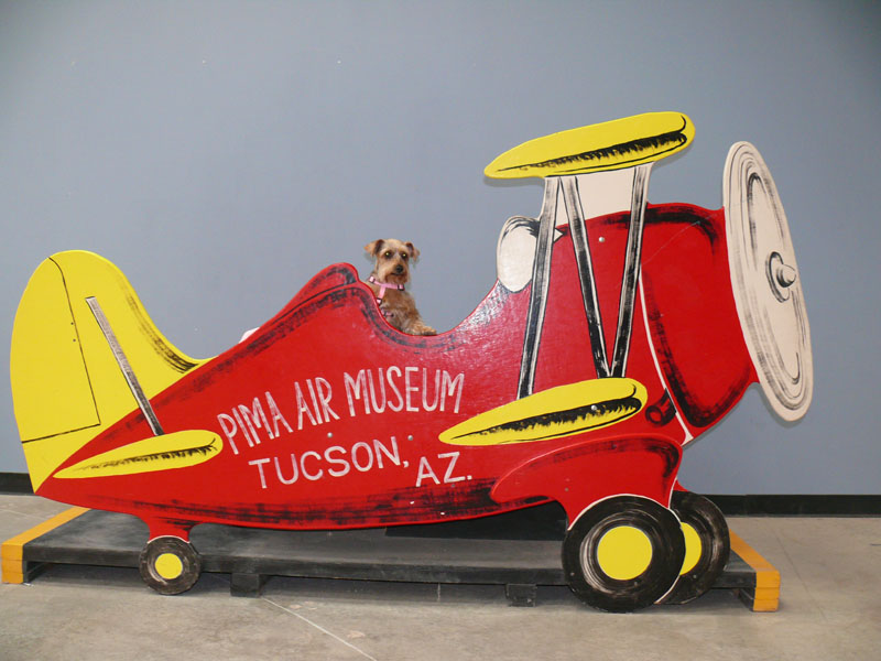 Pima Air Museum, Tucson, AZ<br /> Couldn't believe it but they let dogs into the<br /> Museum!!!