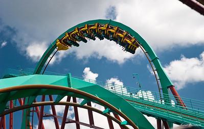 2009.08 Tampa, Park Busch Gardens