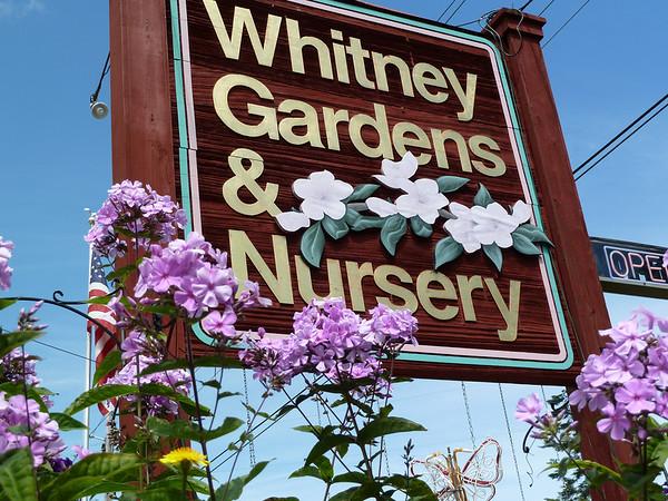 2010 07 Whitney Gardens, WA