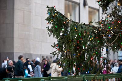 не елке невешано 30 000 цветных лампочек